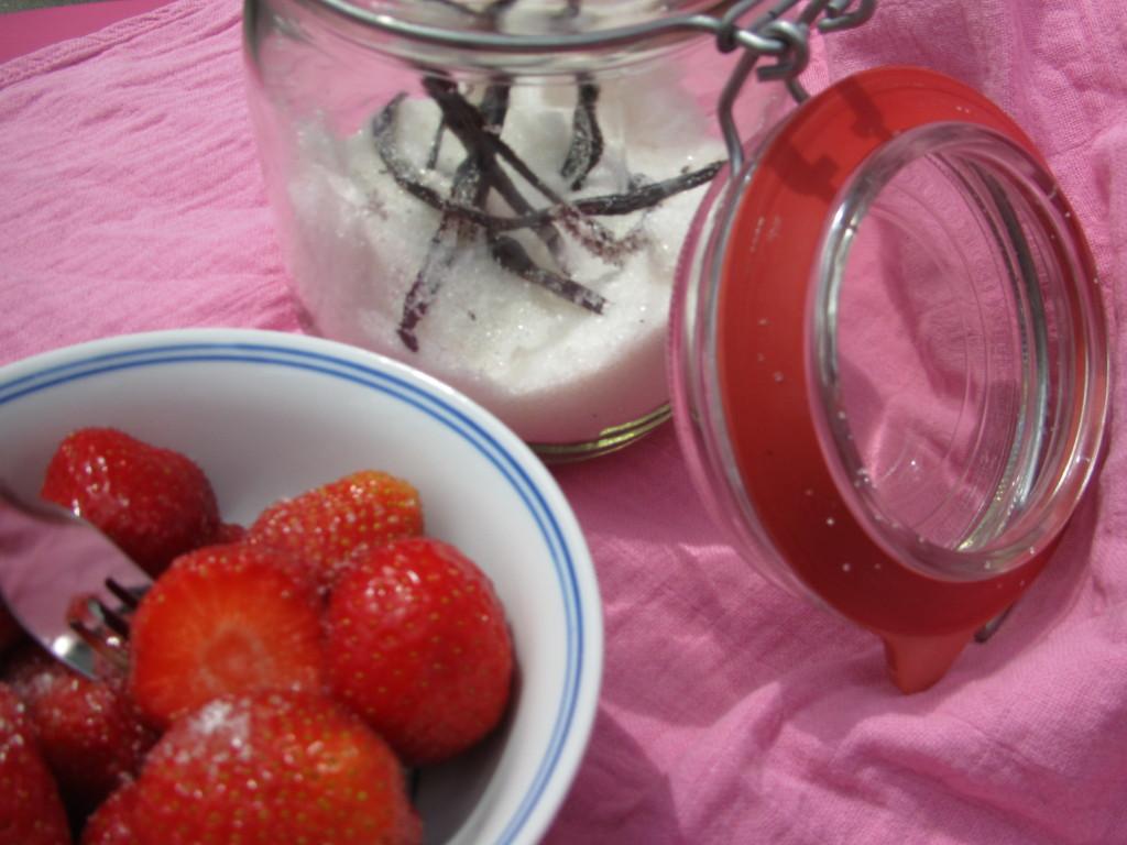 hemelse modder - vanillesuiker