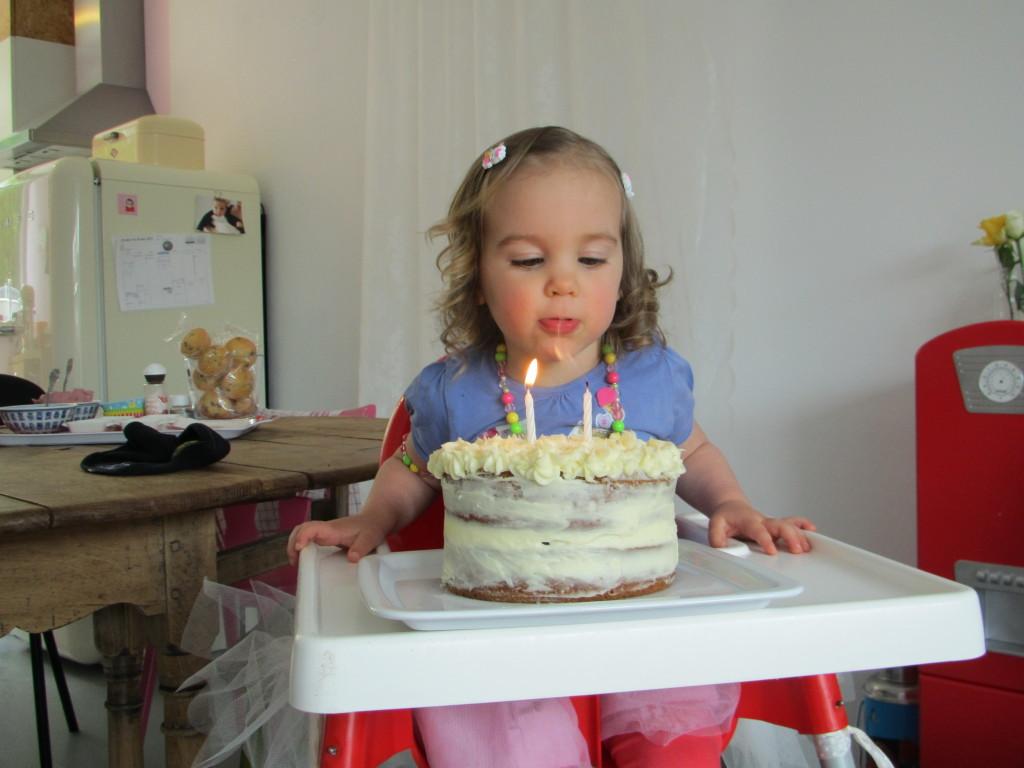 Stevie's verjaardag