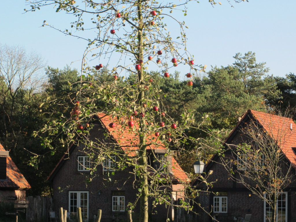 Efteling Bosrijk