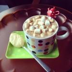 Hot chocolate / Warme chocolademelk // VAN BRITT
