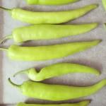 Green peppers / Groene pepers // VAN BRITT