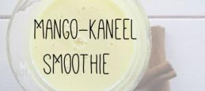 Mango-kaneel smoothie