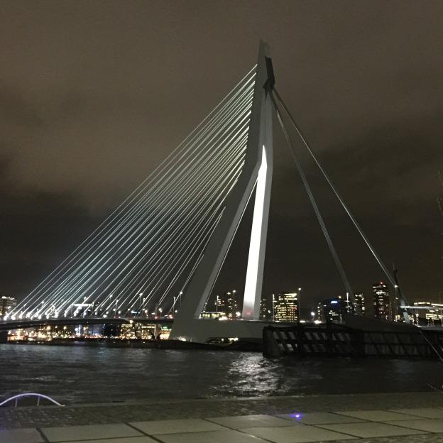 Erasmus bridge, Rotterdam / Erasmus brug, Rotterdam // foto: VAN BRITT