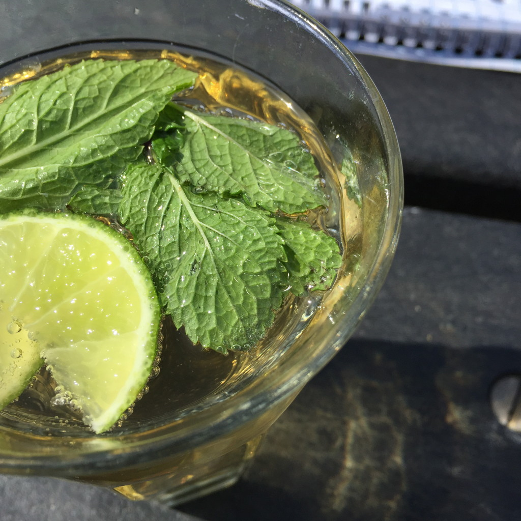 Ginger ale with mint and lime / Ginger ale met munt en limoen // VAN BRITT
