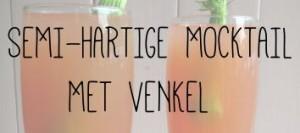 SEMI-HARTIGE MOCKTAIL MET VENKEL