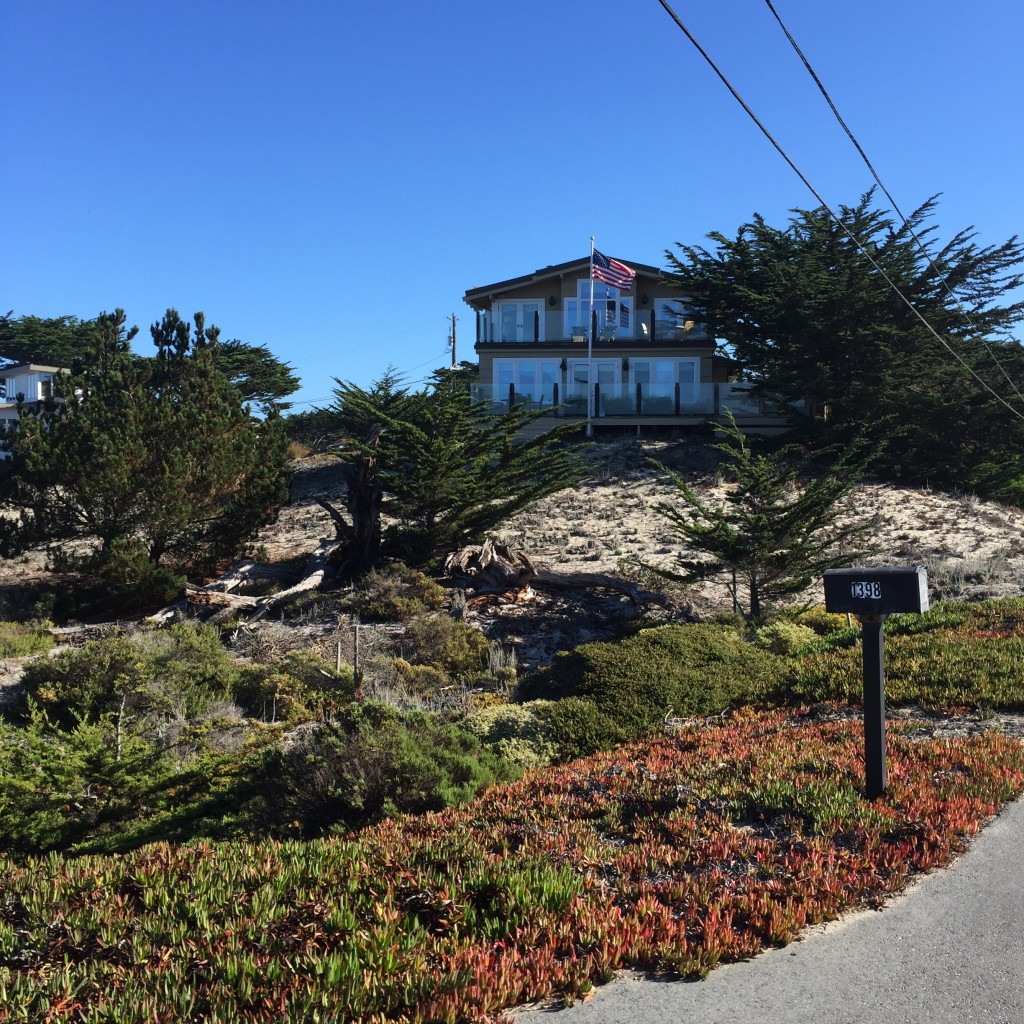 Pacific Grove, California // photo: VAN BRITT