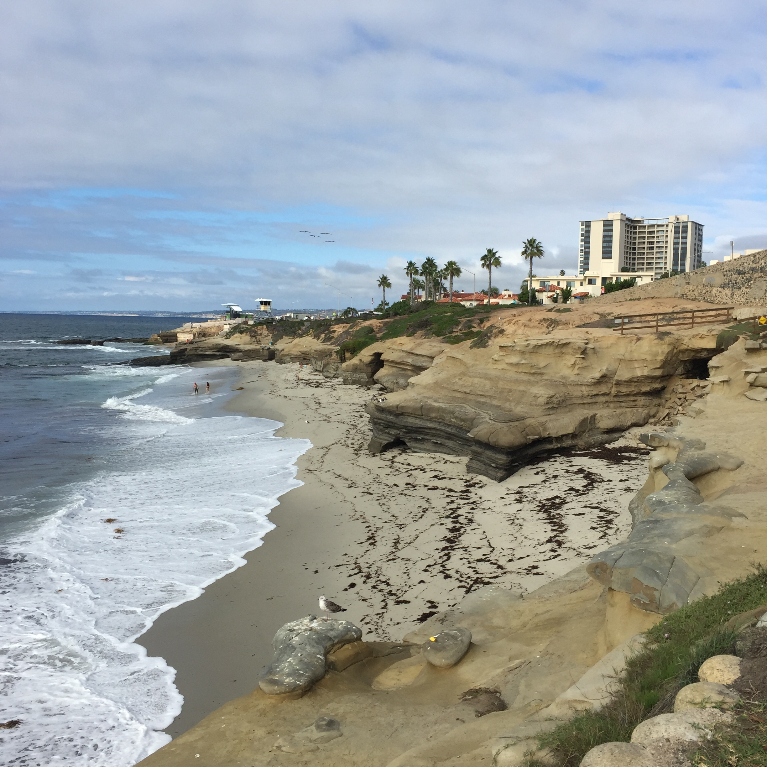 La Jolla, California // photo: VAN BRITT