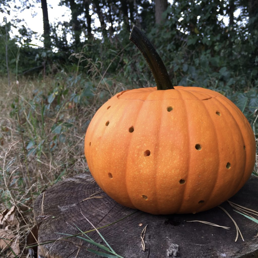 Pumpkin 'carved' with a drill, drilling holes in a pumpkin for Halloween / Gaatjes boren in een pompoen voor Halloween, makkelijke Halloween diy // VAN BRITT