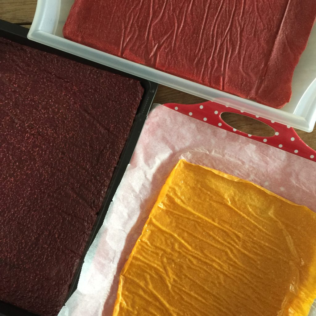 Fruit leather / Fruit leather traktatie // VAN BRITT